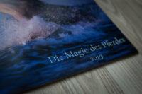 Kalender 2019 Pferdekalender Verena Dechant Pferde