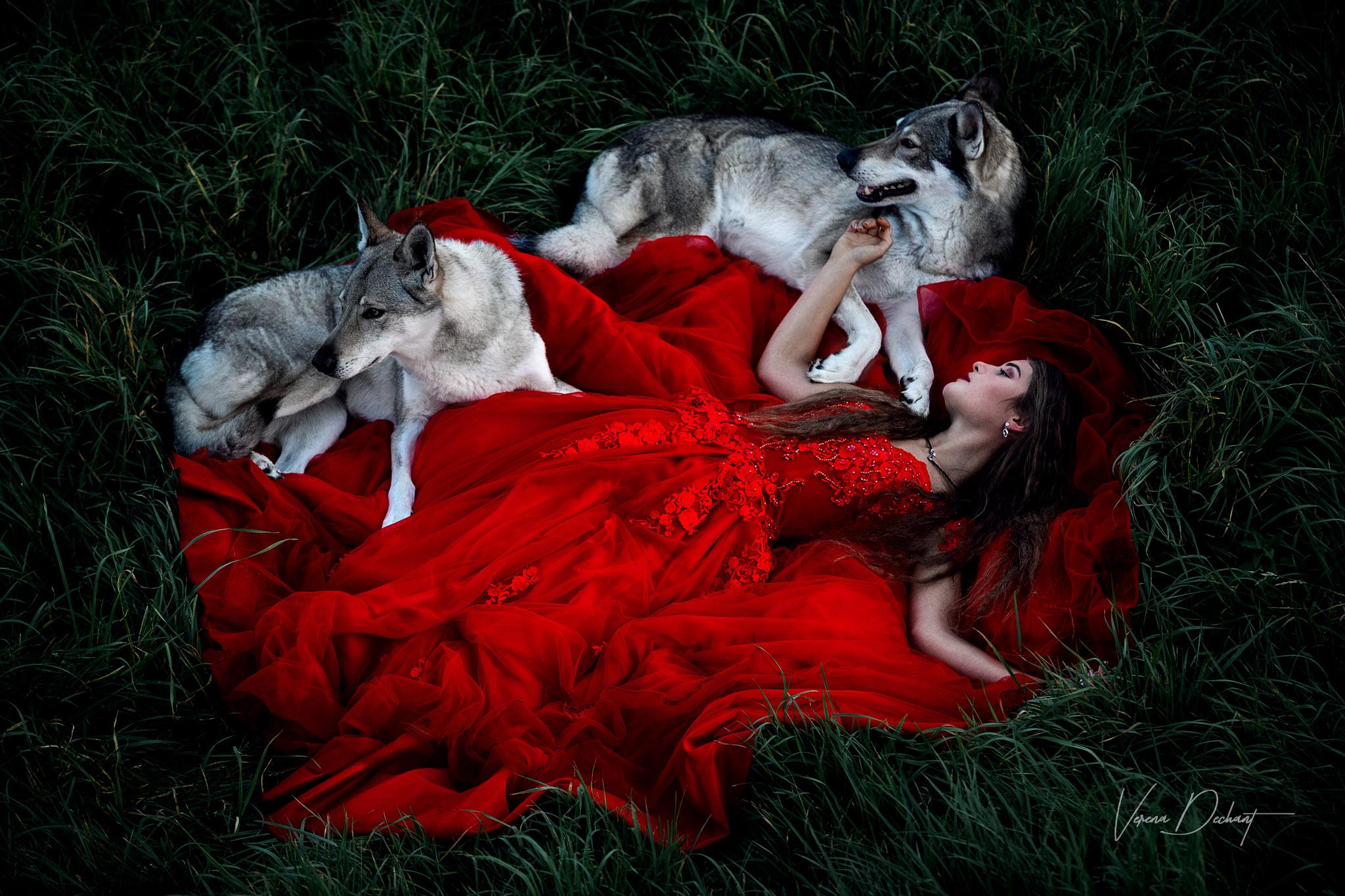 Jana und ihre Wolfshunde